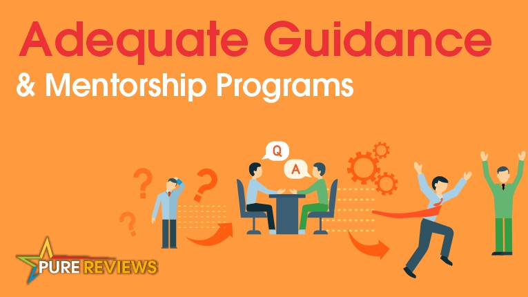 Adequate Guidance And Mentorship Programs